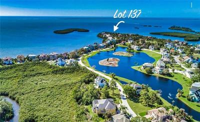 Tarpon Springs Residential Lots & Land For Sale: 2015 Harbour Watch Circle