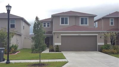 Riverview Single Family Home For Sale: 10725 Southern Forest Drive