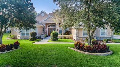 Tarpon Spring, Tarpon Springs Single Family Home For Sale: 2873 Roehampton Close