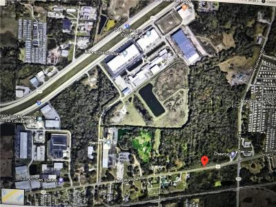 Lakeland Commercial For Sale: 0 New Tampa Highway