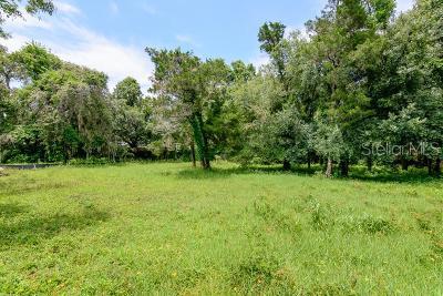 Palm Harbor Residential Lots & Land For Sale: 282 Orange Street