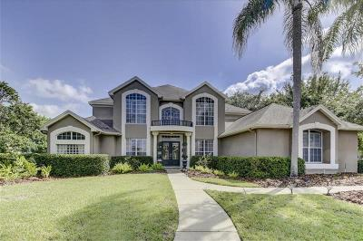 Palm Harbor Single Family Home For Sale: 4085 Arlington Drive