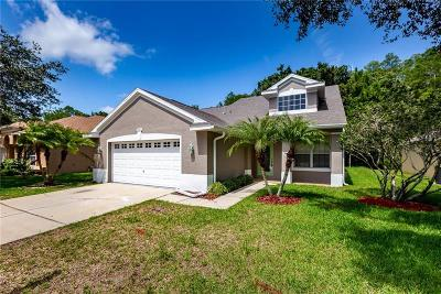 Palm Harbor Single Family Home For Sale: 4841 Ridgemoor Circle