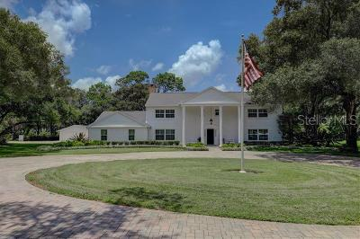 Safety Harbor, Safety Harobr Single Family Home For Sale: 3000 Hargett Lane