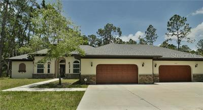 Wesley Chapel Single Family Home For Sale: 7460 Thunderhead Street