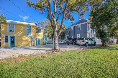 Tarpon Springs Multi Family Home For Sale: 419-421 E Tarpon Avenue