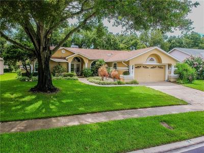 Palm Harbor Single Family Home For Sale: 2686 Resnik Circle W