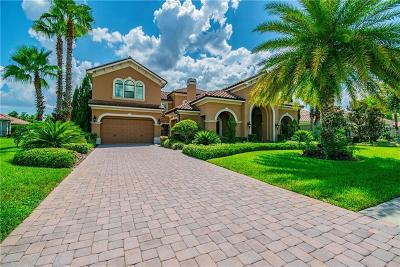 Lutz FL Single Family Home For Sale: $1,475,000
