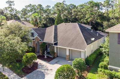 Tampa Single Family Home For Sale: 11919 Meridian Point Drive