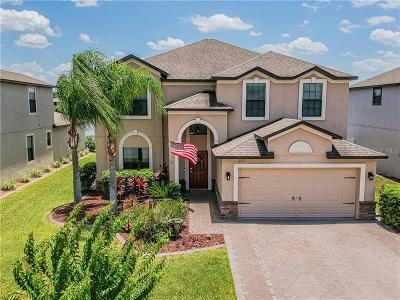 Trinity Preserve, Trinity Preserve Ph 1, Trinity Preserve Phase 1 Single Family Home For Sale: 12370 Eagle Chase Way