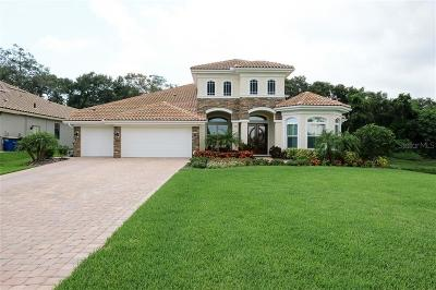 Clearwater Single Family Home For Sale: 3006 Willow Oaks Way