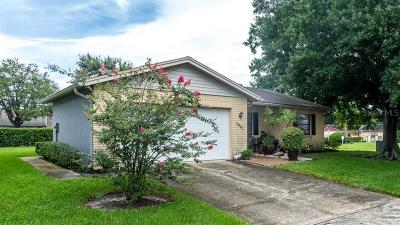 Clearwater, Cleasrwater, Clearwater` Single Family Home For Sale: 3901 Lake Boulevard