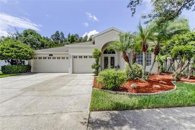 Wesley Chapel Single Family Home For Sale: 5253 Strike The Gold Lane