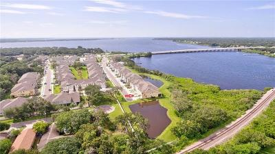 Oldsmar Townhouse For Sale: 9009 Palm Key Avenue