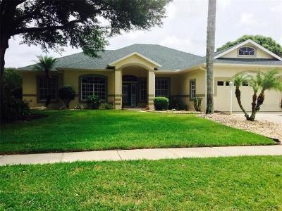 Port Orange Single Family Home For Sale: 6249 Montego Bay Court