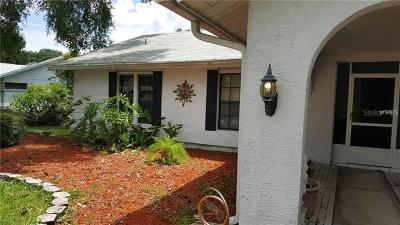 New Port Richey Single Family Home For Sale: 9820 Stephenson Drive