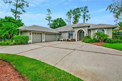 Hillsborough County, Pasco County, Pinellas County Single Family Home For Sale: 1367 Briargrove Way