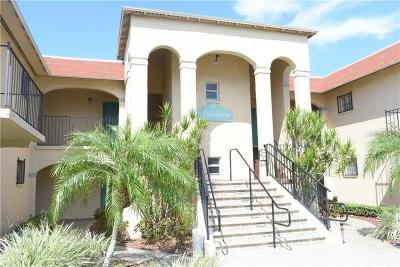 St Pete Beach Condo For Sale: 8151 Blind Pass Road #19