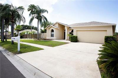 Hillsborough County Single Family Home For Sale: 11329 Clayridge Drive