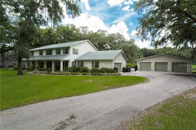 Hillsborough County Single Family Home For Sale: 1611 Cottagewood Drive