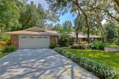 Hillsborough County Single Family Home For Sale: 2735 Saint Cloud Oaks Drive