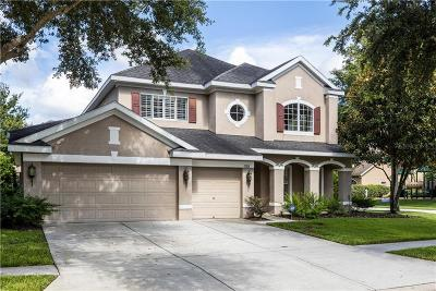 Tampa Single Family Home For Sale: 17818 Arbor Creek Drive