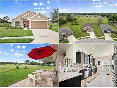 Single Family Home For Sale: 13329 Niti Drive