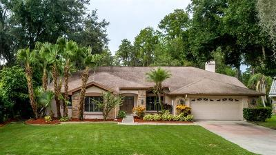 Palm Harbor Single Family Home For Sale: 3324 Cobbs Court