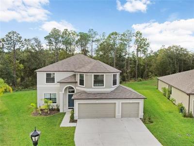 Zephyrhills Single Family Home For Sale: 6563 Paden Wheel Street