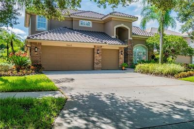 Seminole Single Family Home For Sale: 9669 Maypan Place