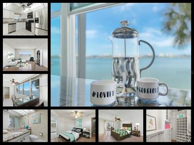 St Petersburg Condo For Sale: 4750 Cove Circle #203