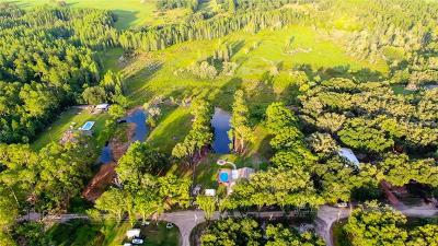 Wesley Chapel Residential Lots & Land For Sale: 30404 Palm Lane