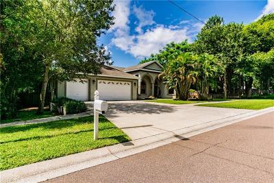 Safety Harbor Single Family Home For Sale: 114 Irwin Street E
