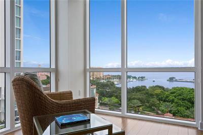 Hillsborough County, Pasco County, Pinellas County Condo For Sale: 300 Beach Drive NE #902