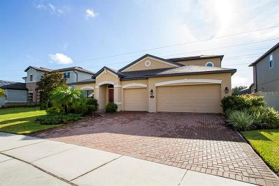 Oldsmar Single Family Home For Sale: 706 Wellington Court