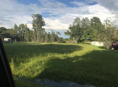Land O Lakes Residential Lots & Land For Sale: Lake Shore Drive