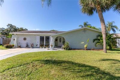 Seminole Commercial For Sale: 11972 Orange Blossom Drive