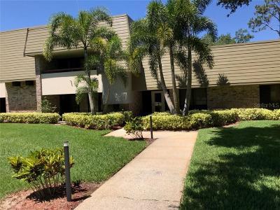 Palm Harbor FL Rental For Rent: $2,500