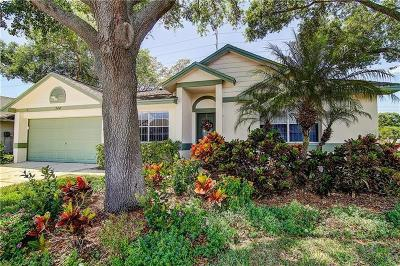 Palm Harbor Single Family Home For Sale: 744 Stonehenge Way