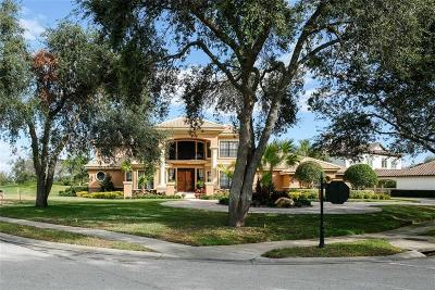 Palm Harbor Single Family Home For Sale: 1205 Playmoor Drive
