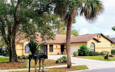 Pasco County Single Family Home For Sale: 3838 Tidewater Road