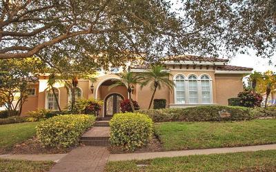 Palm Harbor Single Family Home For Sale: 1150 Skye Lane