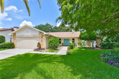 Safety Harbor Single Family Home For Sale: 119 Oak Crest Drive