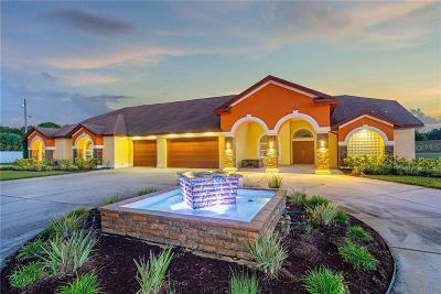 Tarpon Springs Single Family Home For Sale: 651 George Street N
