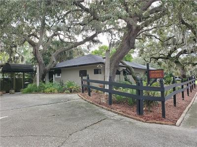 Safety Harbor Single Family Home For Sale: 146 8th Avenue N