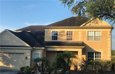 Tampa Single Family Home For Sale: 12902 Greenville Court