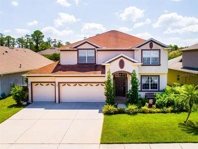 Wesley Chapel Single Family Home For Sale: 27028 Firebush Drive