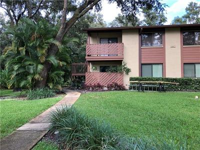 Safety Harbor Condo For Sale: 2367 Flanders Way #C
