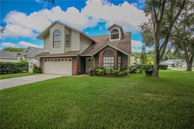 Palm Harbor Single Family Home For Sale: 3225 Montrose Circle