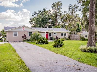 Hillsborough County, Pasco County, Pinellas County Single Family Home For Sale: 20200 County Line Road